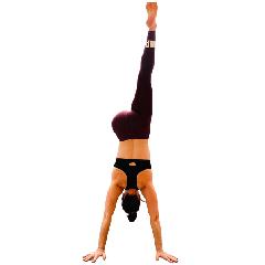 Lisa Walsh | Pilatesbody | Yoga Qualification